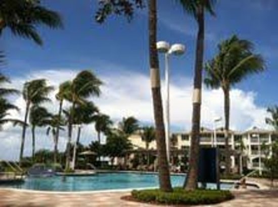 Hyatt Windward Pointe : Hyatt with Pool View