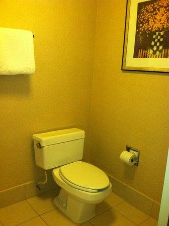 Courtyard New Carrollton Landover : Clean bathroom
