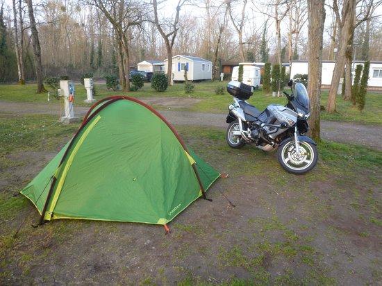 Camping les Acacias : camping