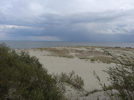 Curonian Spit / Kursiu Nerija National Park: Great Dune