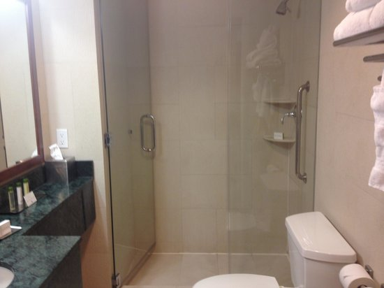 Doubletree By Hilton - Times Square South: Our bathroom, great shower
