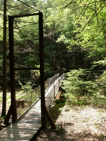 Trough Creek State Park: Swing bridge