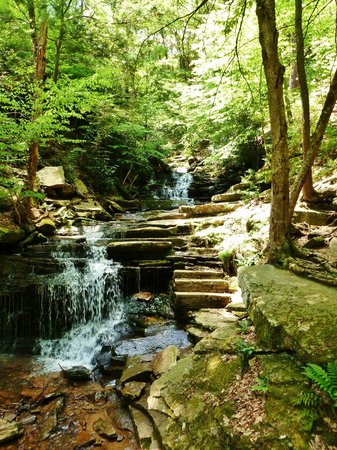 Trough Creek State Park: Waterfall_2
