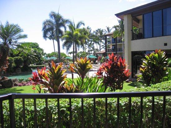 Lawai Beach Resort: view from lanai