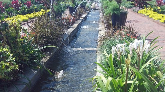 Riverbanks Zoo and Botanical Garden: gardens