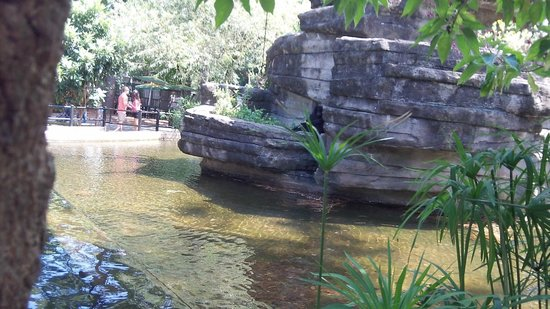 Beautiful Picture Of Riverbanks Zoo And Botanical