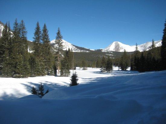 Monarch Dog Sled Rides: beautiful winter scenery