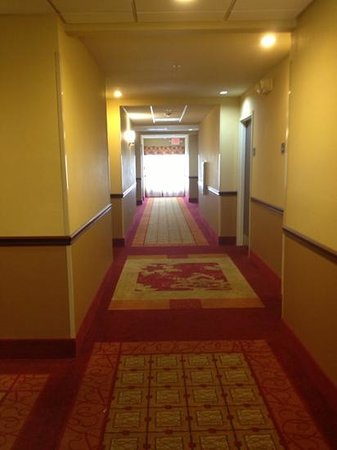 Holiday Inn Express Orlando - South Davenport: nice bright, clean hallways