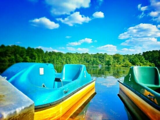 Sesquicentennial State Park: paddle boats