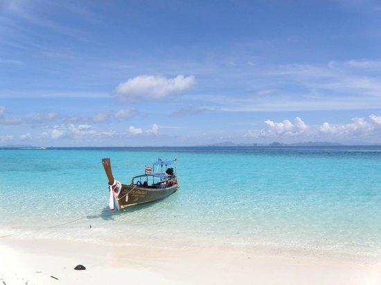 Bamboo island perfect - Picture of Bamboo Island, Ko Phi Phi Don - TripAdvisor