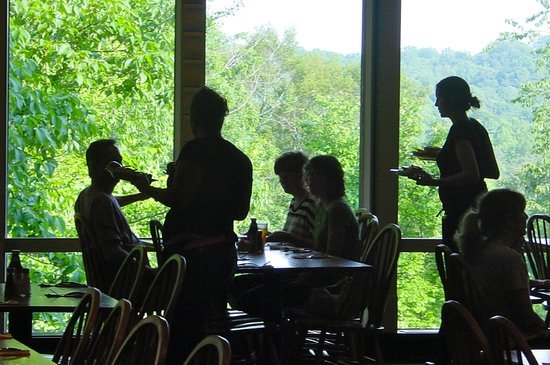 Hocking Hills Dining Lodge: View of the park from the dining room