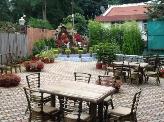 Blueberry Inn: The front garden