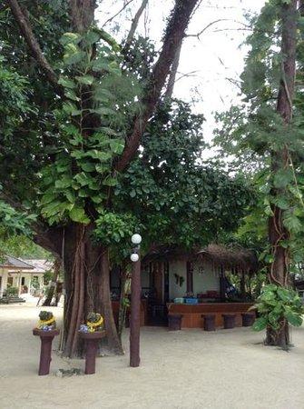 Oawthong Beach Bungalow : oawthong beach