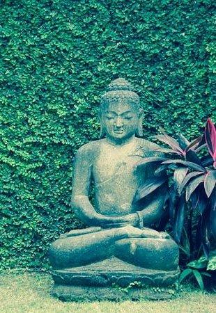 Andari Bali Villas : Inside Villa