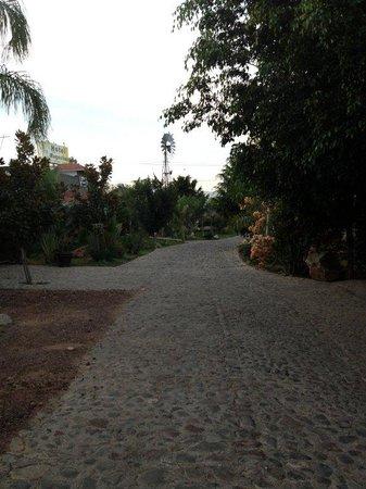 Posada Magnolias: Driveway inside Posada Magnolia property