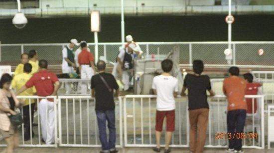 Macau (Yat Yuen) Canidrome: Here's the beef. Trainers haul them into metal tin bins, locked n loaded ready for race.