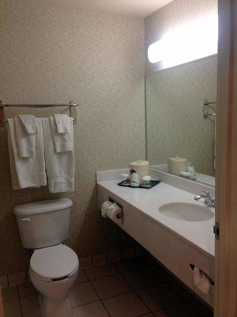 Wingate by Wyndham Gillette : Bathroom