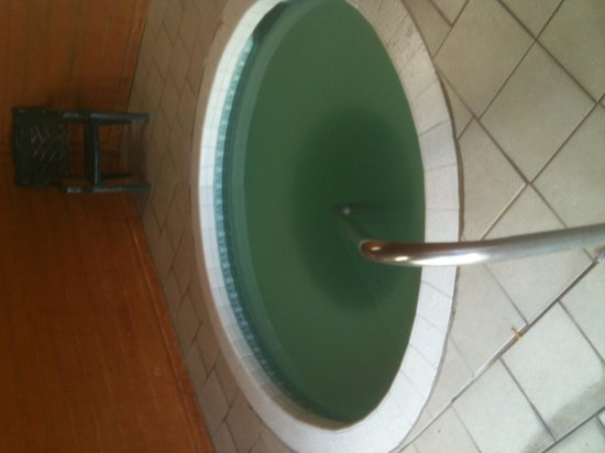 Travelodge Pocatello: The water in the hot tub was green/brown august 2013