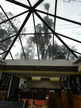 The Tall Trees Munnar: Transparent rooftop dining area