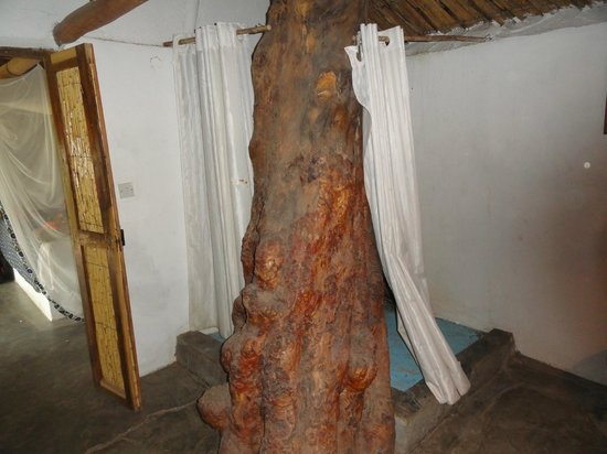 Mgoza Lodge: Tree shower