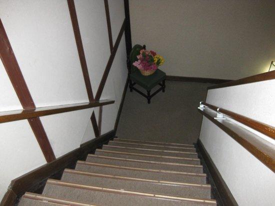 Nanpeidai Onsen Hotel: 急な階段