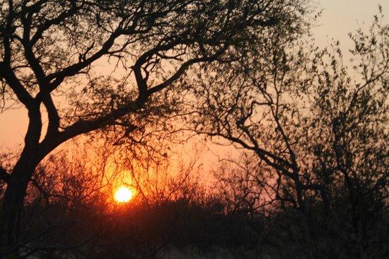 Pondoro Game Lodge: Sunset on safari