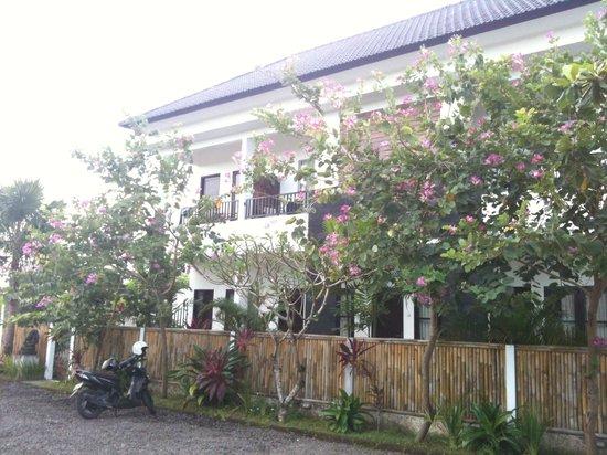 Jepun Bali Homestay: Front side Homestay