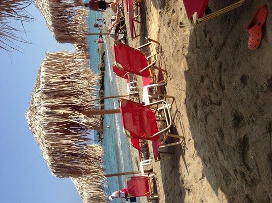 Agia Marina Beach: Bra ställe att hyra solstol på Grecco Mare.