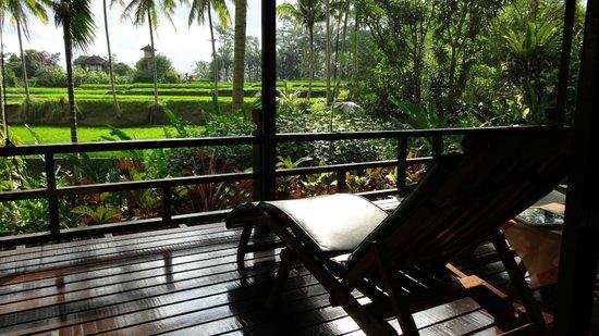 "Villa Orchid Bali: Ausblick vom Bungalow ""Frangipani"""