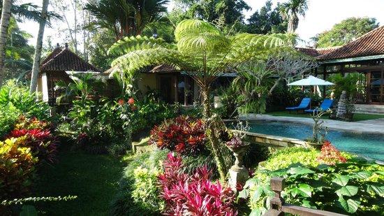 Villa Orchid Bali: Ausblick in den Garten
