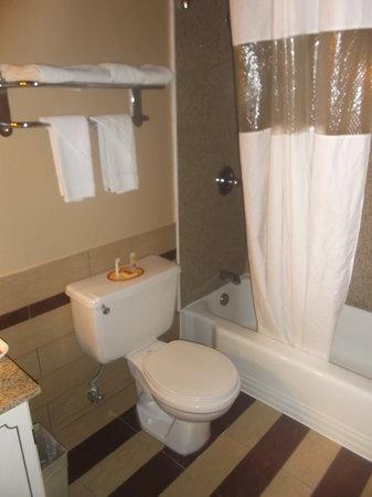 Econo Lodge Clarks Summit : Salle de bain de la chambre 124 au 16 août 2013.
