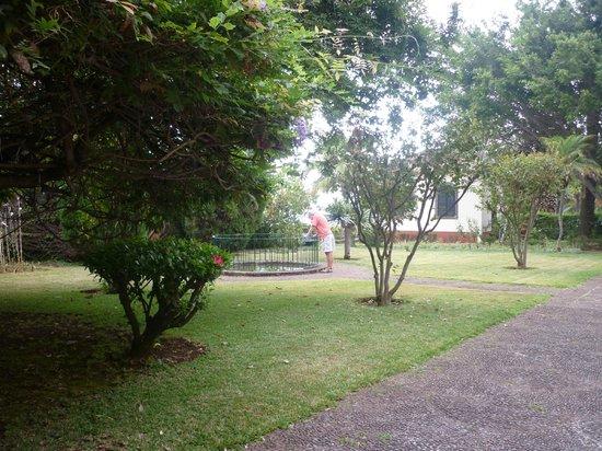 Quinta da Bela Vista : Part of the gardens