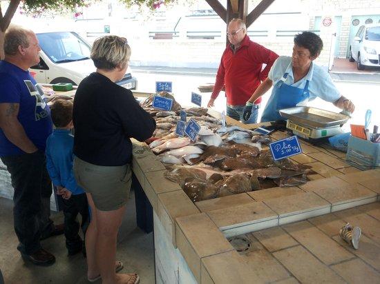 Adonis Grandcamp Residence Les Isles de Sola : verse vis elke dag te koop