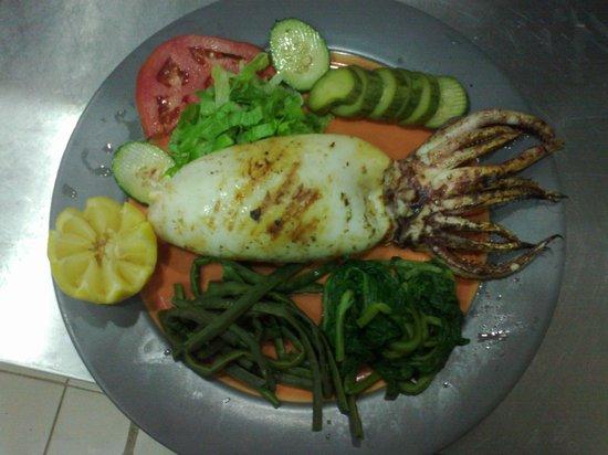 Ellinon Pelagos Tavern: stuffed kalamari