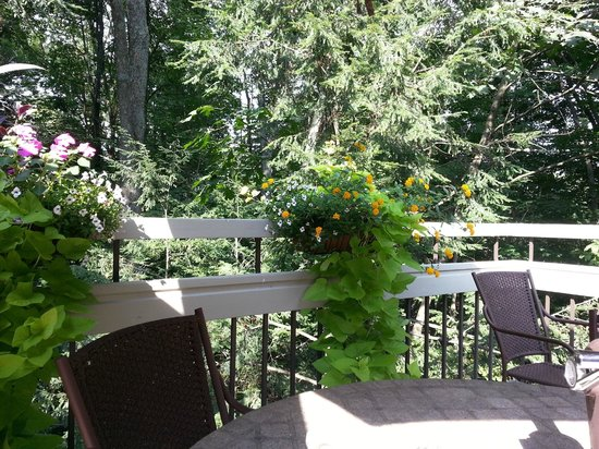 Tarragon at The Inn at Honey Run: Best patio in Ohio!  September 7, 2013