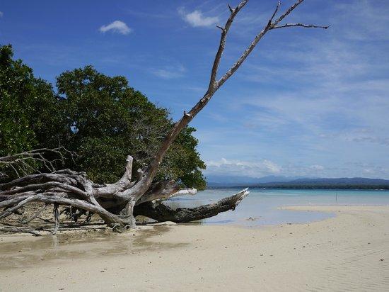 Bokissa Private Island Resort: Malo