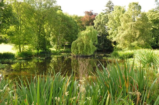 Culloden House: The pond