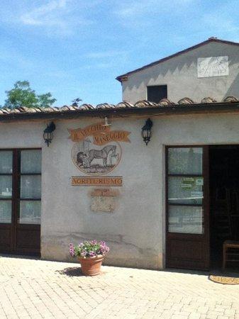 Az Agr Il Vecchio Maneggio : Friendly farm