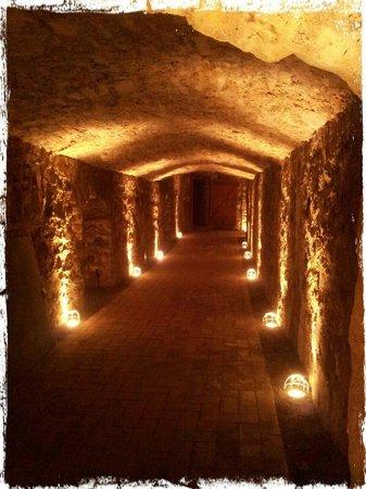 Dornröschenschloss Sababurg: The cellar