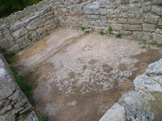 Paestum, อิตาลี: Un Mosaico