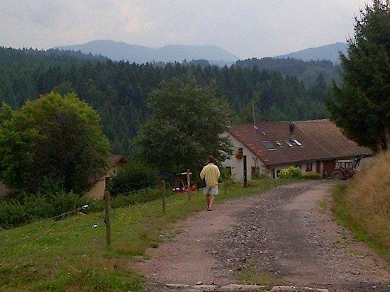 Ferme Auberge du Nouveau Chemin : The track to the farm