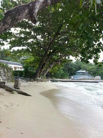 The Resort at Wilks Bay: white sand beach