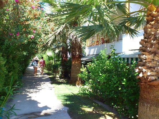 Hydrele Beach Hotel & Village: viale verso piscina