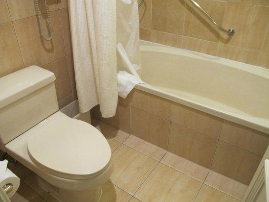 NH Collection Plaza Santiago: Bathroom in standard room