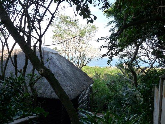 Villa Jaime : The cosy log cabin