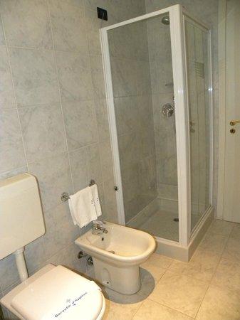 Hotel Arcotel in Casale Monferrato: Toilette
