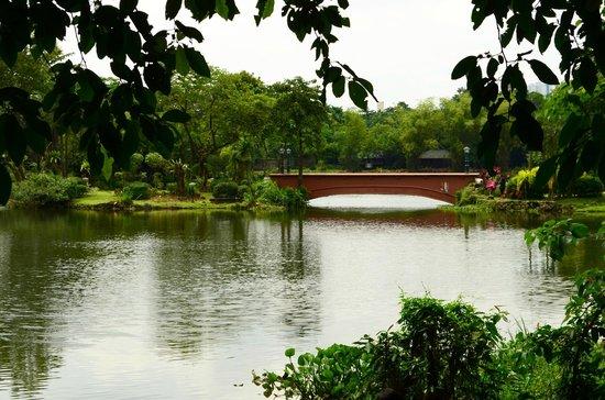 Too small - Ninoy Aquino Parks and Wildlife Center