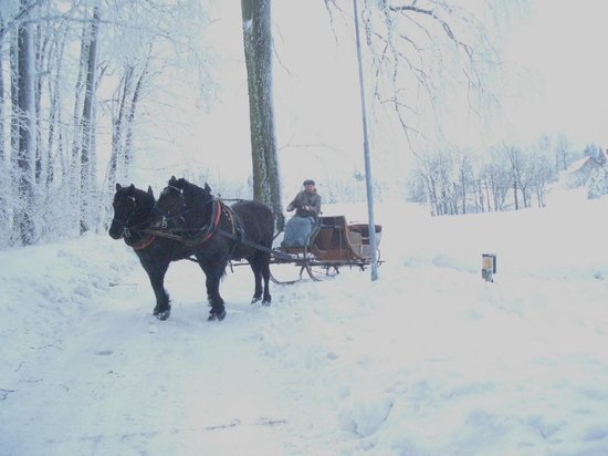 Hotel Gasthof Conrad: Ein Wintermärchen