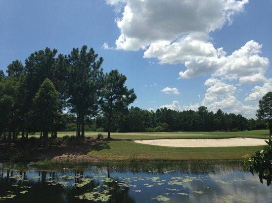 Picture Of Marriott's Lakeshore Reserve, Orlando