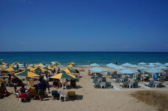 Olympic II: Пляж отеля